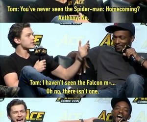 falcon, Marvel, and spiderman image