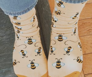 bees, yellow, and socks image