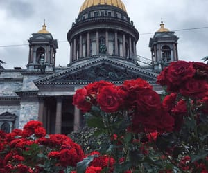 flowers, red, and russia image