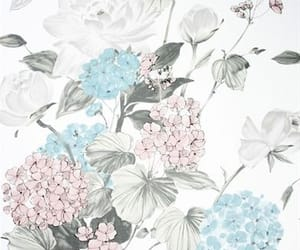 background, color, and flower image