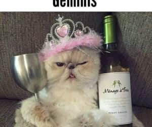 gemeos, signo, and gèminis image