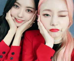 k-pop, kpop, and pledis image