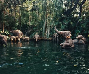elephants, green, and animals image