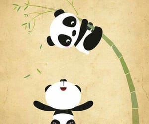 panda, cute, and backgrounds image
