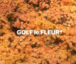 flower boy, flowers, and golf image