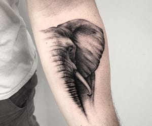 black and white, elephant, and tattoo image