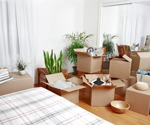 moving companies, moving house, and furni image