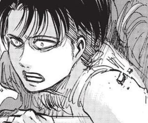 levi, captain levi, and snk image