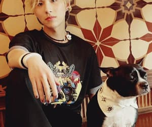 ace, sehyoon, and gif image