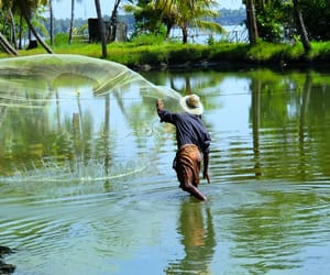 kerala holiday packages, kerala honeymoon packages, and budget tour to kerala image