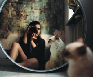 cat, girl, and mirror image
