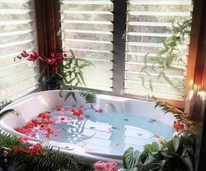 bath and plants image