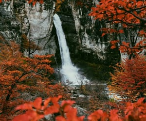 flowers, waterfall, and landscape image