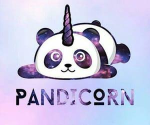 galaxy, kawaii, and panda image