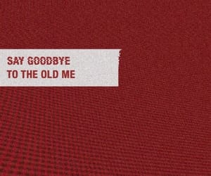 quotes, red, and goodbye image