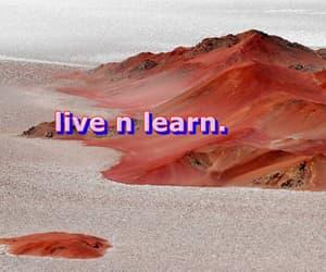 learn, live, and Lyrics image