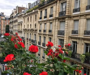 architectural, building, and flowers image
