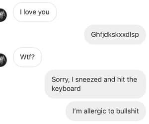allergic, I Love You, and bullshit image