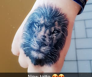 lion, new, and liontattoo image