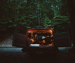 forest, car, and light image