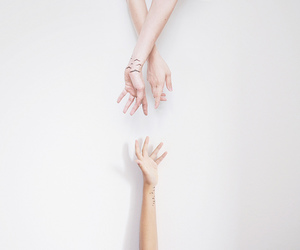 hands, white, and birds image