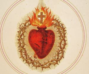 the sacred heart of jesus image