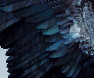 blue, aesthetic, and wings image