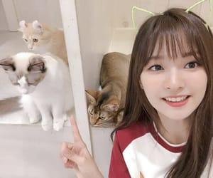girl, idol, and kpop image