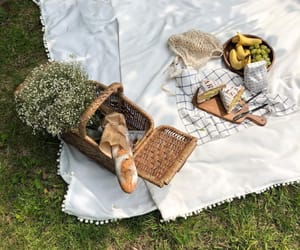 picnic, aesthetics, and love image