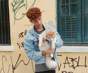 cat, ginger, and hipster image
