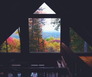 autumn, nature, and window image