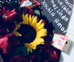 amor, flores, and gif image