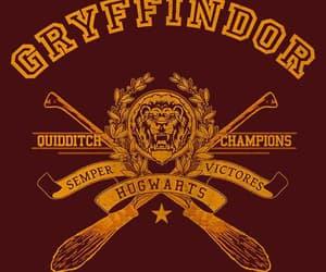 gryffindor, hogwarts, and sdmnxoxo image
