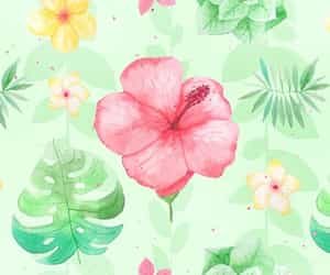 patterns and floral patterns image