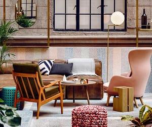 decor, interior design, and lifestyle image