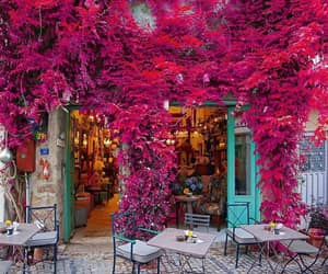flowers and istanbul image