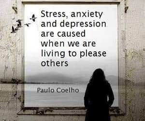 stress, anxiety, and coelho image