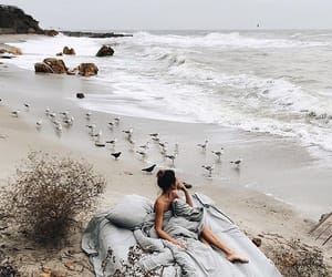 beach, beauty, and bed image