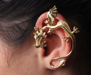 accessories, dragons, and earrings image