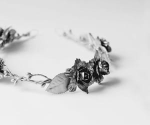 aesthetic, rose, and white image