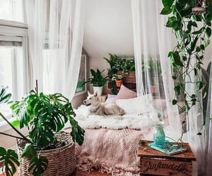 bedroom, decoration, and green image