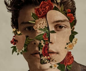shawn mendes, music, and flowers image