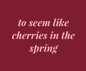 aesthetics, Lyrics, and cherries image