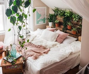 plants, home, and bedroom image