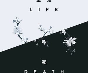 wallpaper, death, and life image