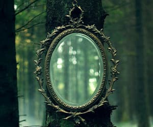 mirror, forest, and magic image