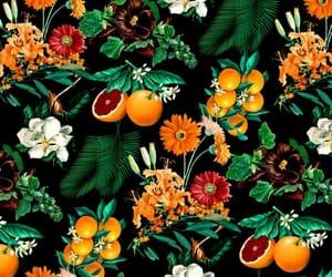 fruit, flowers, and orange image
