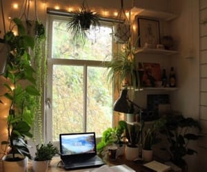 plants, bedroom, and desk image