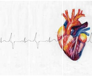 Collage, pulse, and heart image