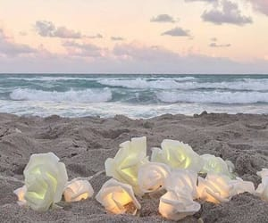 beach, aesthetic, and flowers image
